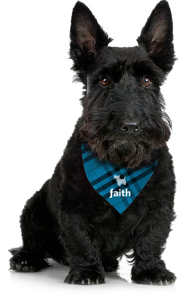 Faith Advertising Agency South Melbourne